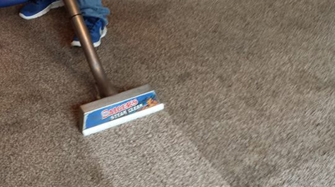 professional carpet cleaners grand rapids mn 30